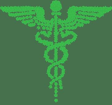 Difference Between Medical Marijuana And Recreational Marijuana